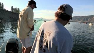 Columbia River (Brewster Pool) Sockeye Salmon Fishing