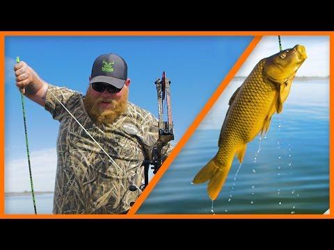 Bowfishing Washington