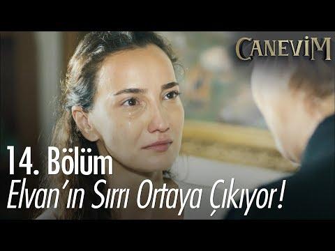Elvan'ın geçmişindeki sır ortaya çıkıyor - Canevim 14. Bölüm