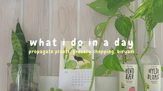 Download what i do in a day┃propagate plant, what's in my bag etc. 🌱👜 Ep. 13