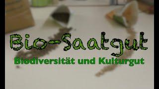 Bio-Saatgut - Biodiversität und Kulturgut