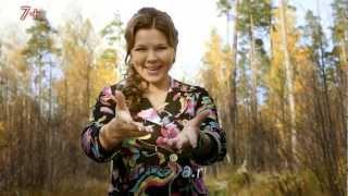 Смотреть клип Гузель Уразова - Алтын Таулар