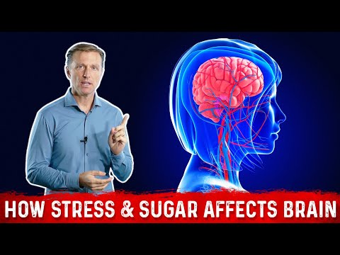 How Stress & Sugar Affects Your Brain!