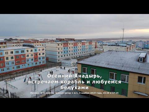 Осенний Анадырь, встречаем корабль и любуемся белухами. Анадырский лиман. Чукотка. Арктика.