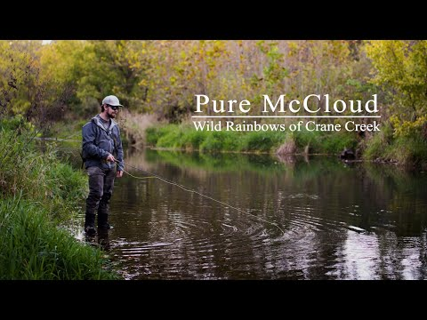Ozarks On The Fly | VOL2 | FLY FISHING For WILD RAINBOW TROUT