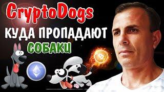 Crypto Dogs многие говорят что у них пропали собаки Посмотри видео до конца Крипта без вложений