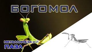 Богомол - 3D puzzle головоломка из металла