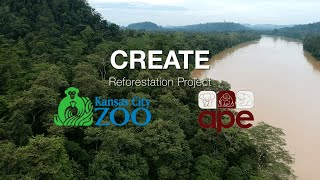 APE Malaysia CREATE (Corridor REstoration for Animals Endangered and Threatened) Project