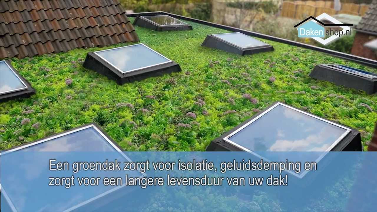 Dakenshop epdm dakbedekking instructiefilm plat dak lijmen