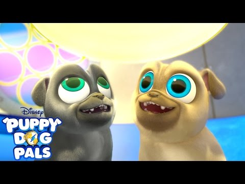Going on a Mission | Music Video | Puppy Dog Pals | Disney Junior