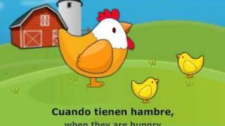 los pollitos dicen - The Little Chicks