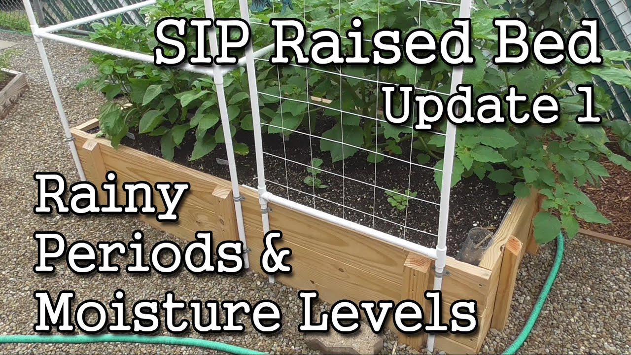 Sip Raised Bed Update 1 Self Watering Containers How