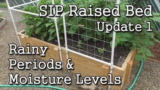 Sip Raised Bed (update 1) + Self-watering Containers + How-to Monitor Moisture Levels