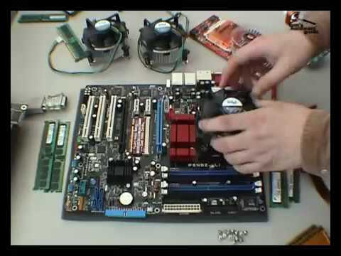 Two Platforms with Dual Core CPUs (Tom