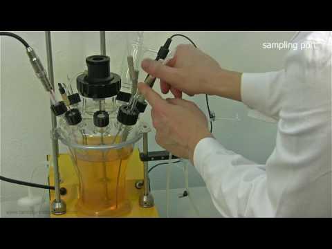 Autoclavable Bioreactor And Fermenter LAMBDA MINIFOR: Installation Guide