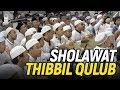 Sholawat Thibbil Qulub & Qosidah Yaa Maulid Al Musthofa