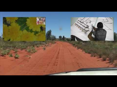 UNSW Walking As Art 2017: Luke Power Video for Ikebana Desert Bird