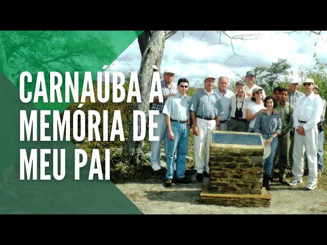 Documentário Carnaúba à memória de meu pai