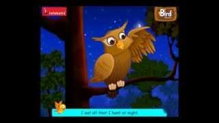 Infobells -  Bird Rhymes