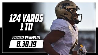 Rondale Moore Full Highlights Purdue vs Nevada | 11 Rec, 124 Yards, 1 TD | 8.30.19