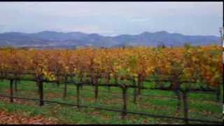 Great living in Napa, Solano, and Sonoma Counties of Northern California