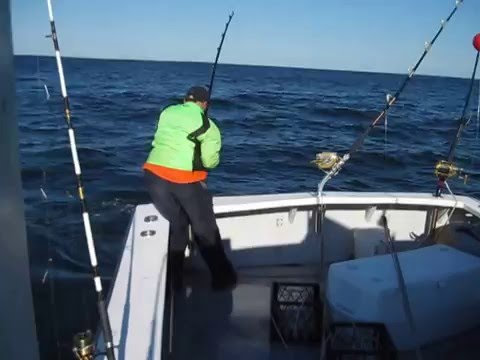 Seated dating while other trip, has been job dating penelope of bluefin tuna hunter has.