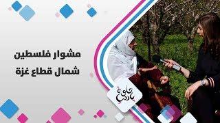 مشوار فلسطين من شمال قطاع غزة - حلوة يا دنيا