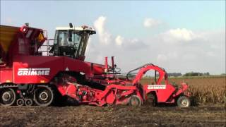 Potato Harvest with Grimme`s 2015
