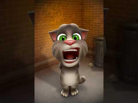 Ya leli ya lela New clip Tom /يا ليلي يا لالا كليب جديد توم