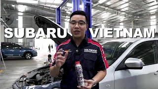 VOLTRONIC Vietnam (Review Subaru)
