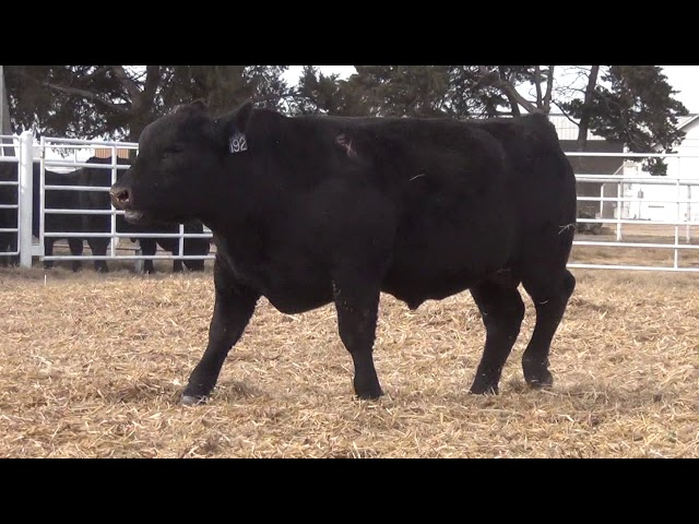 Express Ranches Lot 192