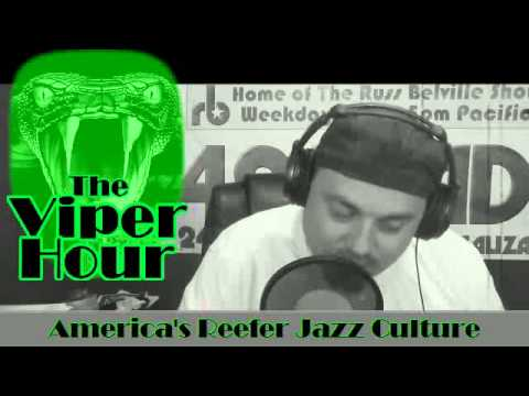The New Viper Hour #46 - A Little More Pot-pourri