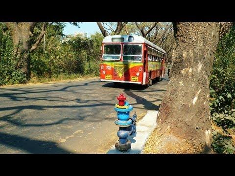 aarey milk colony mumbai / india tour travel tourism / best indian tourist places