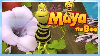 Maya the bee - Episode 33 - What a nice Wasp