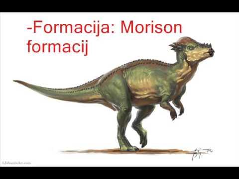 Dino Profile - Pachycephalosaurus Wyomingensis (Ep. 5.)