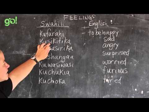 Video 17 - GO! presents BEST Swahili Tutorials - FEELINGS (live from Tanzania)