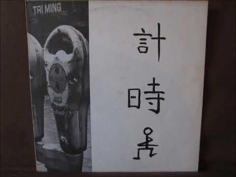 Ernst Reijseger - Taiming (1981 Holland, Free Improvisation/Free-Jazz) - Full Album