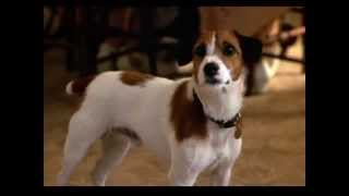 My dog skip soundtrack 1  main theme