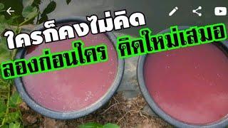 ให้น้ำแบบใหม่ไม่เสียของ รดน้ำทั้งทีใส่จุรินทรีย์ในสระ..ลองดูๆ