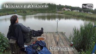 Рыбалка в Вашутино Химки Платник Как погода влияет на поклевки карпа Как клюет в дождь Рыба