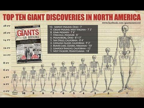 "Jim Vieira/Hugh Newman ""Giants In North America"""