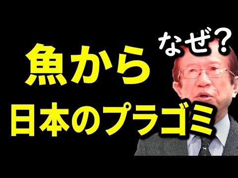 """【武田邦彦】魚が日本の大量プラゴミで汚染された理由!この深い""""闇""""を奴らは知っているのに見て見ぬふりで認めていませんでした"""