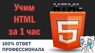 Учим HTML за 1 Час! #От Профессионала thumbnail