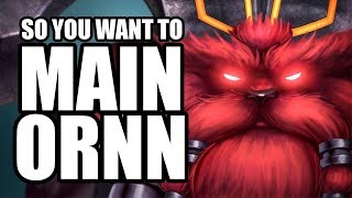 Gambar cover So you want to MAIN ORNN