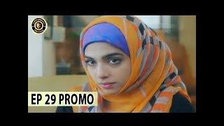 Aisi Hai Tanhai Episode 29 (Promo) Nadia Khan & Sonia Hussain