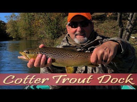 Arkansas White River Trout Fishing Report November 6, 2019