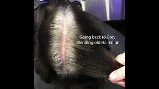 Hair color correction back to grey
