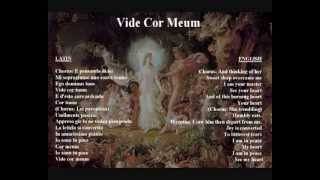 Vide Cor Meum   original libretto in Italian   latin with translation     YouTube