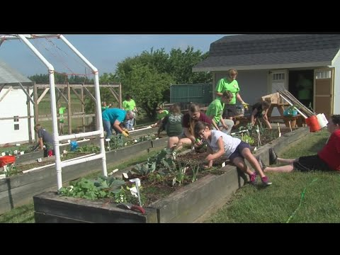 Mill Creek Park offers vegetable gardens for kids