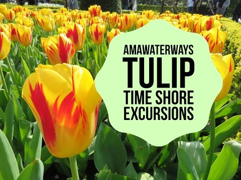 AmaWaterways Shore Excursions On Tulip Time River Cruise
